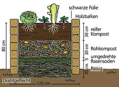 garten hochbeet Gemüseanbau im Hochbeet - Someone new to your life you will love it, you've waited for months for him to co. Raised Vegetable Gardens, Veg Garden, Vegetable Garden Design, Raised Garden Beds, Raised Beds, Garden Plants, Vegetable Planters, Farm Gardens, Outdoor Gardens