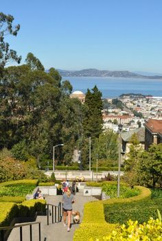The view from the top of San Francisco's Lyon Street stairs.