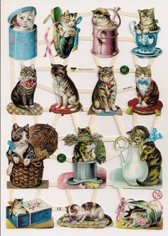 German Victorian Style Embossed Scrap Die Cut Cats in Containers EF7360
