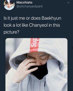 Is that really baekhyun? As in baekhyun the baek? Chanbaek Fanart, Exo Chanbaek, Kim Minseok, Exo Ot12, Baekhyun, Fandom Kpop, Xiuchen, Exo Memes, Kpop Exo