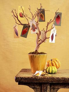Fall Foliage Tree Centerpiece--Could also turn this into a Thanksgiving Tree--write things you're thankful for on the back of the cards Fall Tree Decorations, Easy Halloween Decorations, Halloween Party Decor, Fall Halloween, Halloween Crafts, Thanksgiving Tree, Thanksgiving Greetings, Thanksgiving Centerpieces, Diy Centerpieces