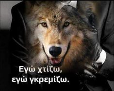 Wolf, Angel, Memes, Quotes, Life, Quotations, Angels, Wolves, Animal Jokes