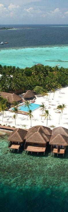 Maafushivaru Island Resort...Maldives   LOLO