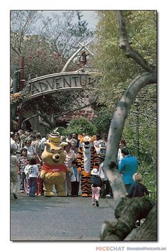 Pooh and Tigger at Disneyland postcard Disney Land, Disney Parks, Walt Disney, Disneyland Secrets, Disneyland Park, Pooh Bear, Tigger, The Wiggles, Vintage Disneyland