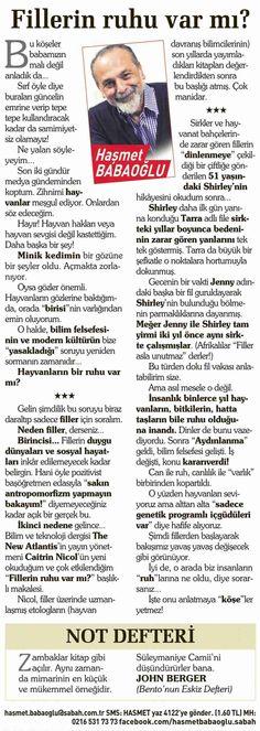 Haşmet Babaoğlu - 22 Mayıs 2013 - Sabah gazetesi - Fillerin ruhu yok mu?