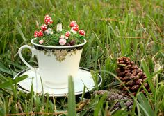 Fairy Garden in a Teacup cup with saucer by DarkRoseDelirium,