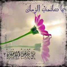 imam, mahdi,shia ,shia poetry ,mahdi,يا مهدي,يا صاحب الزمان,الامام المهدي