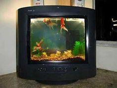 Aquário ! Mais um exemplo de como Reciclar Televisor... trabalhoso, mas legal