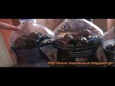 ΤΑ ΠΡΩΤΑ ΝΕΑ: Πώς φτιάχνουμε ελιές εύκολα και γρήγορα (βίντεο)