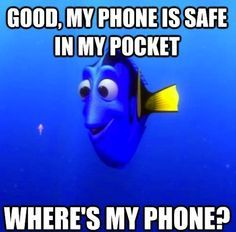 The Forgetful Dory Meme Reminds Us How Stupid We Are Sometimes - Mandatory