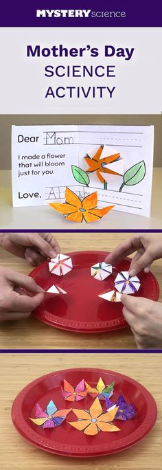 Flowers that bloom in water Mothers Day Flowers, Mothers Day Crafts, Holiday Crafts For Kids, Holiday Fun, Projects For Kids, Craft Projects, Craft Ideas, Flower Cards, Paper Flowers
