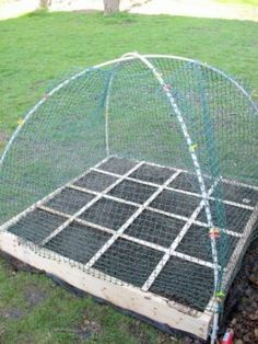 Framed garden netting for square foot garden / raised garden beds. Raised Garden Beds, Raised Beds, Container Gardening, Gardening Tips, Organic Gardening, Vegetable Gardening, Deer Resistant Garden, Garden Netting, Bird Netting