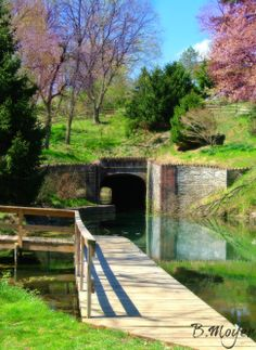 *Bridge and Tunnel* taken in Union Canal Tunnel Park in Lebanon, PA 2014
