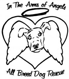 Best Bully Sticks Rescue Spotlight on In The Arms Of Angels. Read about this Tucson area dog rescue and their latest success story, Lily. #inthearmsofangels #dogrescue #greatdogs #animalrescues