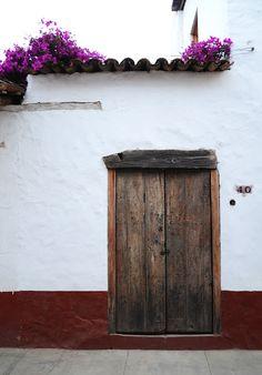 Door & Bougainvillea at Tapalpa, Jalisco.  @cavatequila  cavatequila.com.mx