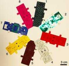 Bioengineer Invents Foldscope, $1 microscopes that diagnose diseases including malaria