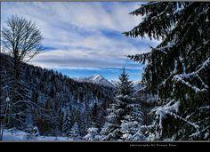 Muntii Bucegi,3 Brazi Wonderful Places, Beautiful Places, Famous Castles, All Over The World, Romania, Scenery, Wildlife, Mountains, City