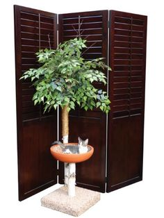 24 best cat tree furniture with leaves images in 2019 cool cat rh pinterest com