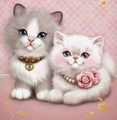 Pretty Persian Kittens.