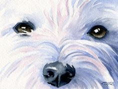 West Highland Terrier Art Print Watercolor Painting Signed DJ Rogers                                                                                                                                                                                 More