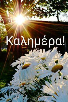 Good Afternoon, Good Morning, Greek Language, Christmas Cards, Mornings, Wallpapers, God, Night, Beautiful