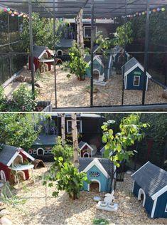 Children's page - rabbit farming Rabbit Shed, Rabbit Hutch Plans, Outdoor Rabbit Hutch, Rabbit Farm, Indoor Rabbit, Rabbit Hutches, Pet Rabbit, Bunny Cages, Rabbit Cages