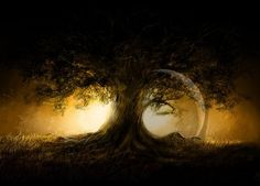 Summer Songby *Gate-To-Nowhere Digital Art / Drawings / Landscapes & Scenery Best Pictures Ever, Cool Pictures, Tree Poem, Fire Image, Moon Drawing, Cool Desktop, Desktop Wallpapers, Summer Songs, Artsy Photos