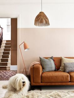 Add a touch of urban groove to your living space with the retro-packed Hackney, where vintage style and supreme comfort combine Living Room Paint, Living Room Colors, Home Living Room, Living Room Decor, Dining Room Colour Schemes, Bedroom Color Schemes, Hallway Colour Schemes, Plafond Rose, Half Painted Walls