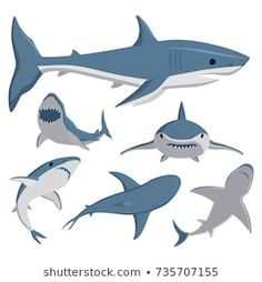 Free Vector Graphics, Free Vector Images, Vector Art, Illustrations, Shark Games, Sea Fish, Cartoon Images, Character Design, Illustration