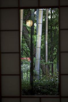 Kyoto, Japan  beautiful through the window