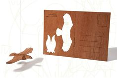 postcard wood - Eagle, three-card-set
