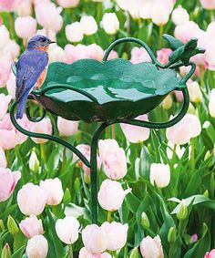 Look at this Green Metal Garden Stake Birdbath on today! Bird Bath Fountain, Evergreen Enterprises, Nour, Side Garden, One With Nature, Water Features In The Garden, Garden Stakes, Small Gardens, Water Garden