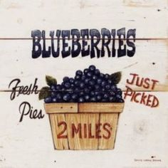 Metaverse Blueberries Just Picked by David Carter Brown Canvas Art