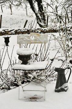 Jardin dans la neige!