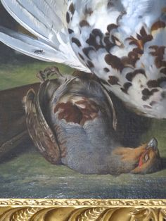 Partridge, detail of Spaniel and Dead Game, van der Mijn