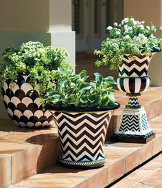Dress up your entryway or backyard with these black-and-white urns!
