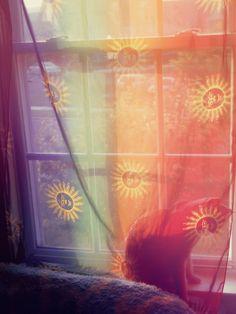 sheer rainbow sun curtains