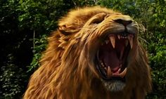 """""""...after all, he's not a tame lion."""""""