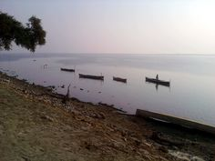 Manchar Lake is the largest freshwater lake in Pakistan and one of Asia's largest. It is located west of the Indus River, in Dadu District, Sindh, Pakistan. The lake is a stop-off on the Indus flyway for Siberian migratory birds.