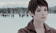 """TWILIGHT SAGA MEME: [2/2] Female Characters : Alice Cullen """