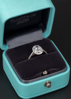 Tiffany & Co Soleste Oval Diamond Engagement Ring 1.73ct F/VS1