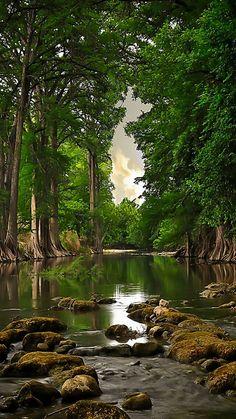 River Nature