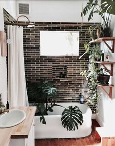 It must be house plant watering time! I used to do this in one of my old apartments. Fill the bathtub with house plants and give them a shower and water at the same time! Here you've also got a beautiful bright bathroom to enjoy too with dark brown subway tile and a thick wooden bathroom counter top. I would take a shower with these house plants any time! #TropicalBathroomspaces #houseplantsbathroom