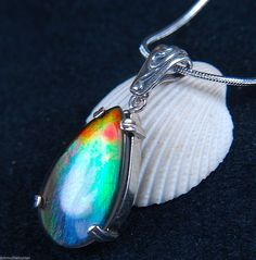 Ammolite Jewelry Pendant Bright Flashy Colour Solid 925 Sterling Silver SS Chain | eBay
