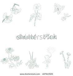 Medical Plants background vector - stock vector