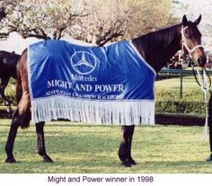 1998 Might and Power - Melbourne Cup winner - Google Search