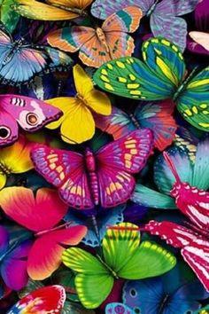 Borboletas Coloridas Bright Bold Exclusivo Nova Arte De Parede Meninas Interruptor De Luz Placa | Casa e jardim, Materiais de construção, reforma e acabamento, Instalação elétrica e energia solar | eBay!