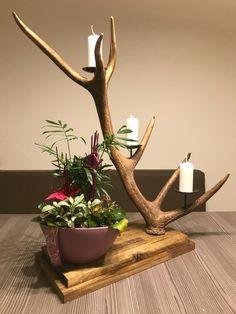 Hirschgeweih Deko mal anders? Ein sehr schöner Geweih Kerzenhalter auf Akazienholz. Ein echter Blickfang! www.oh-my-deer.com/hirschgeweih-deko