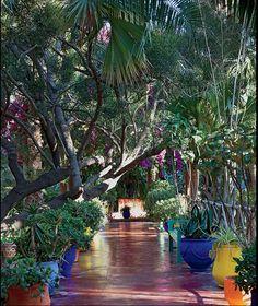 Majorelle Garden in Marrakech what a gorgeous path to walk upon. Mediterranean Garden, Marrakech, Beautiful Gardens, Paths, Backyard, Architecture, Building, Pretty, Floral