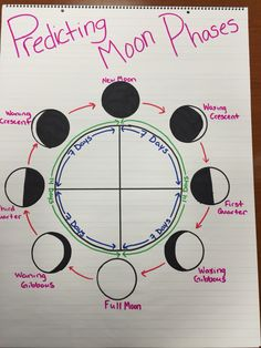Middle school science · science education · science classroom · predicting moon phases anchor chart science lesson plans, science ideas, science for kids, Fourth Grade Science, Elementary Science, Middle School Science, Science Classroom, Teaching Science, Science Education, Science Activities, Social Science, Science Ideas